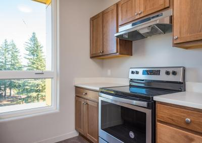 459 Rockwood Apartments - Kitchen Range and Oven